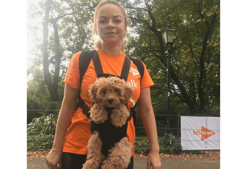 London MS Walk